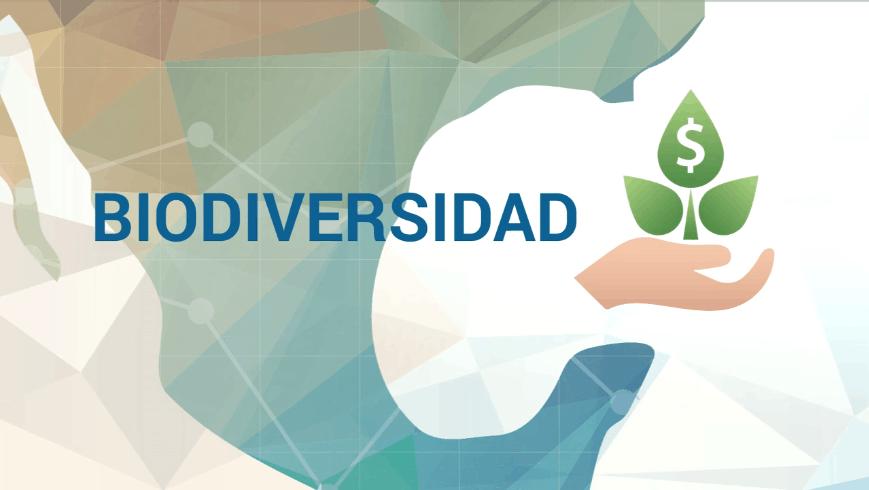 PNUD Biodiversidad y financiamiento